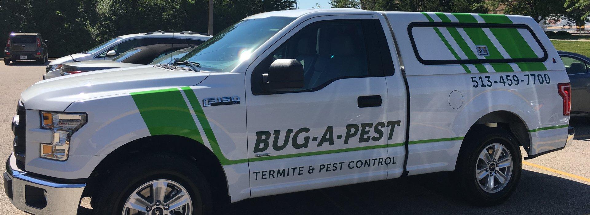 bugapest vehicle graphics